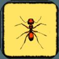 蚂蚁进攻计划