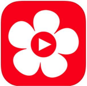 布米米app