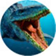 深海恶龙争霸